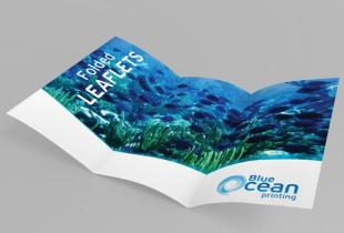 leaflets fodled 310×210