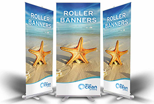star fish x 3 roller banners 310×210