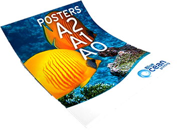 Posters…